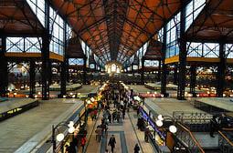 Budapest-TEFL-teaching-market