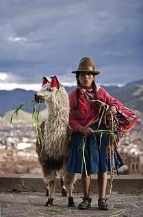 peruvian woman with her llama cuzco peru