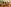 Bangkok, Thailand English Teaching Q and A with Julianna Montgomery