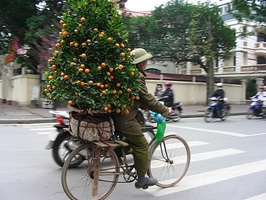 Teaching English in Vietnam - Tet