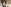 My Transition from Teaching English in the Middle East to Journalism