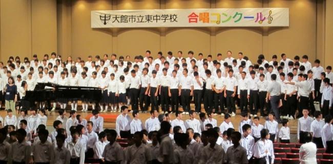 Alumni Stories - Teaching English in Japan