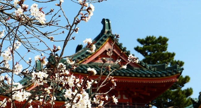 Experience Spring Celebrations around the world