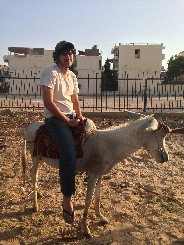 Adam Lucente - Erbil, Iraq - Donkey