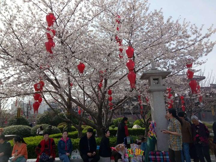 Cultural Celebrations in China