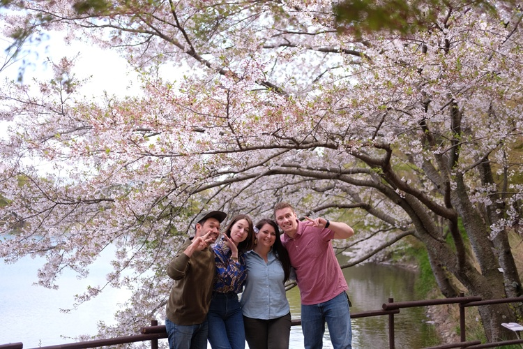 What are the salaries for teaching English in South Korea