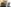 Can I Use My TEFL Certification to Teach English in the United States?