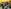 But I Don't Speak the Local Language! - Teaching English in China