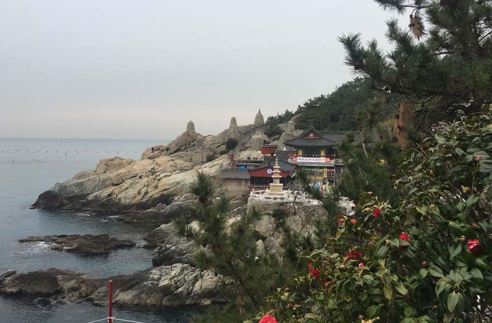 TEFL South Korea