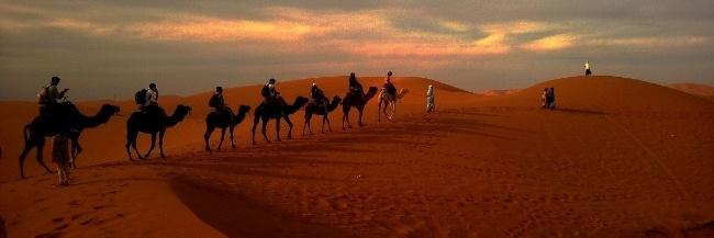 caravan-middle-east-saudi-desert-camel-650.jpg