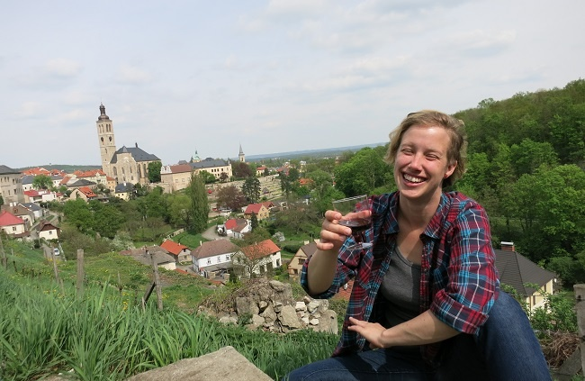 tefl czech republic