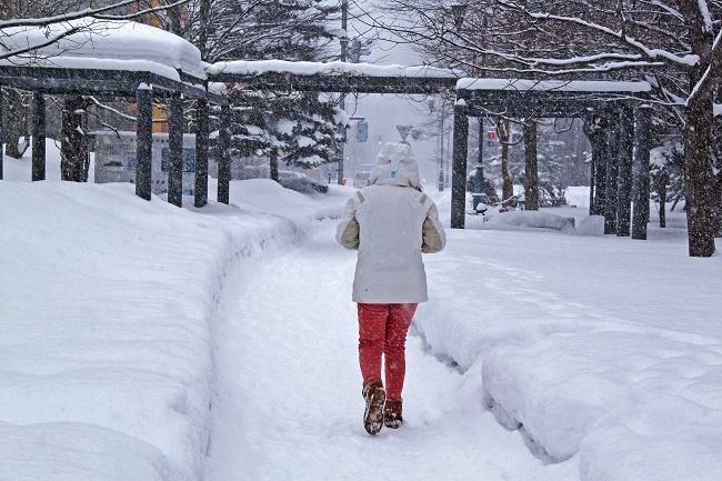 Top Ten Cities to Teach in Japan - Sapporo