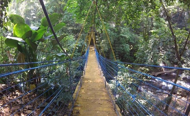 Teaching English Abroad in Costa Rica