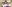 Trang, Thailand English Teaching Q&A with Marilia Lawson