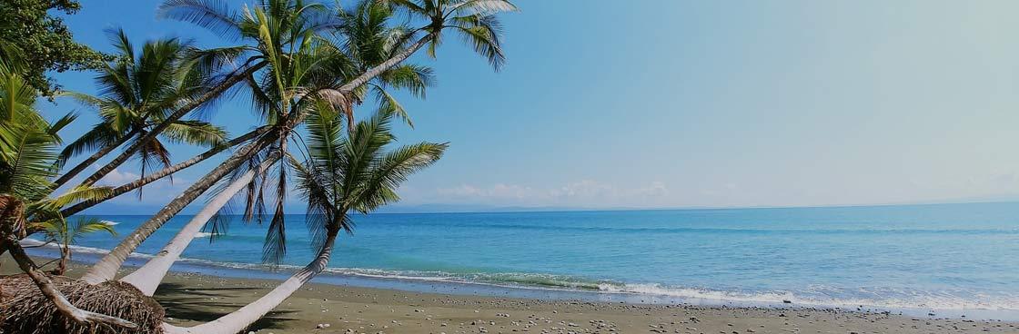 Playa Grande TEFL Course