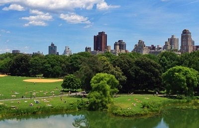 TEFL Certification New York City