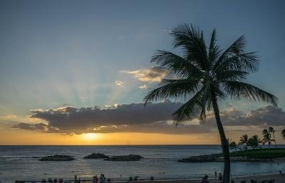 TEFL Certification Hawaii